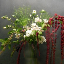 picture of dramatic arrangement