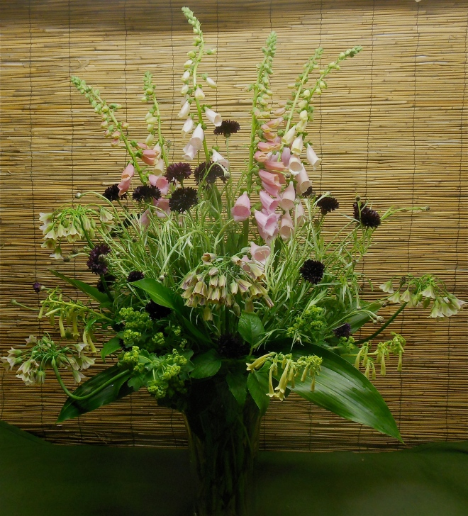 bouquet of Foxglove and Bachelors button
