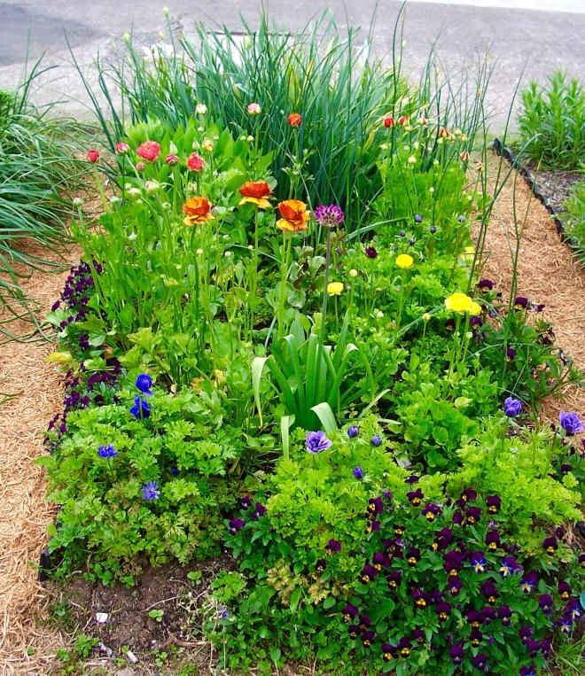 garden-arrangements-40